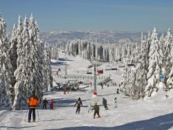 Kopaonik Accommodation 2018/2019